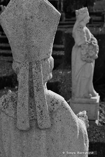 8 - Епископский сад - Каштелу Бранку - Португалия