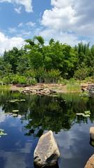 Asian Bamboo Gardens