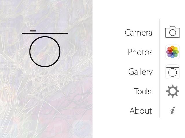 Camera Roll-4161