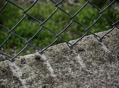 Do Not Push on Fence