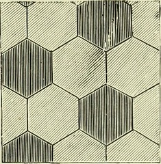 "Image from page 112 of ""The dictionary of needlework : an encyclopaedia of artistic, plain, and fancy needlework dealing fully with the details of all the stitches employed, the method of working, the materials used, the meaning of technical terms, and, w"