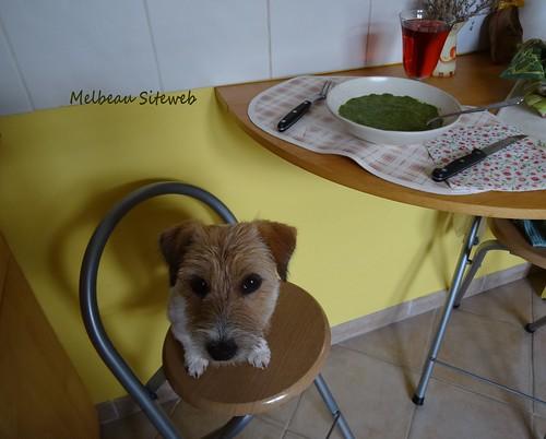 Côté cuisine : A la soupe