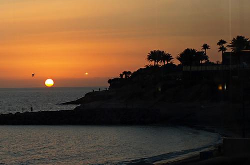 After dark, Costa Adeje, Tenerife