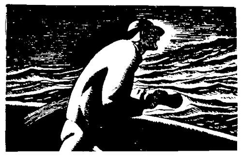 《白鲸》中的插图