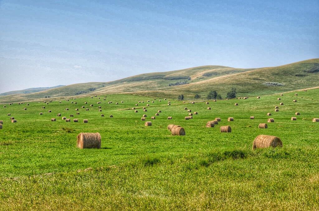 Alberta in 11 Photos: Why It's Bucket List Worthy