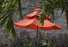 Orange Umbrella Pop-up Garden