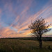 Sunset Streaks by Erik Johnson Photography