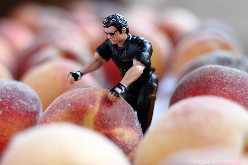 peaches for salsa