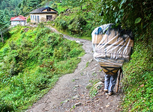 Yes those are Sherpa legs under that basket, carrying supplies up the mountain