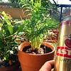 """Mit Bier und einem großen Pott Chili auf meiner """"Terrasse"""" :)"""