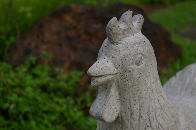 Stone Chicken