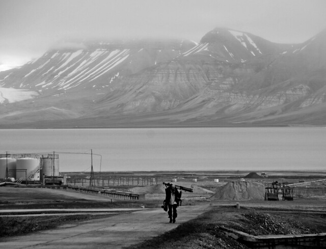 svalbard and jan mayen singles Svalbard and jan mayen, norway is located at norway country in the islands place category with the gps coordinates of 79° 0' 178524'' n and 17° 39' 576576'' e.