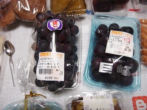 harazurumicninoeki022