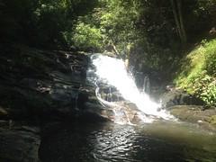Chattahoochee River Falls