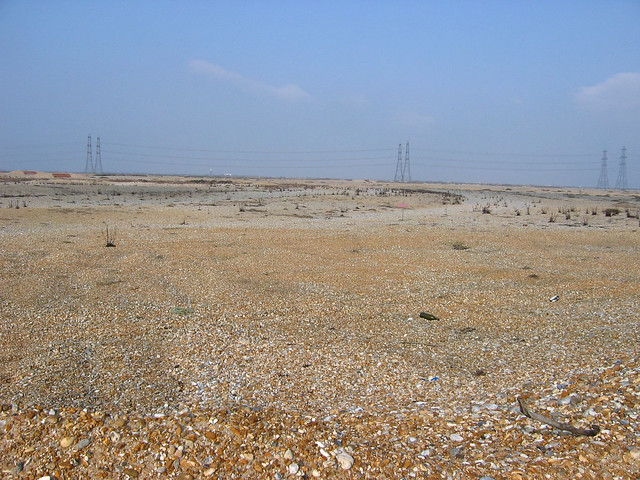 The beach west of Dungeness