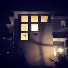 House glow.