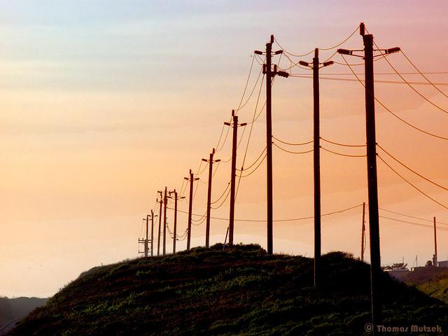 Utility Poles along HWY 1 near Wilder Ranch State Park, Santa Cruz County