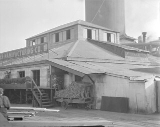 Seattle Cedar Lumber Company mill, 1915