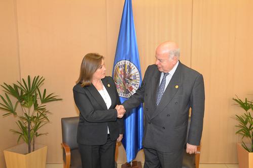 Secretario General de la OEA se reunió con Canciller de Perú