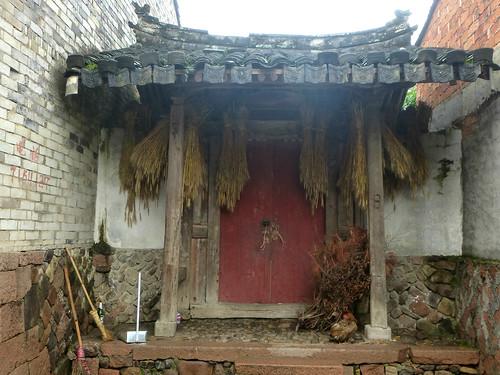 Zhejiang-Cangpocun (59)