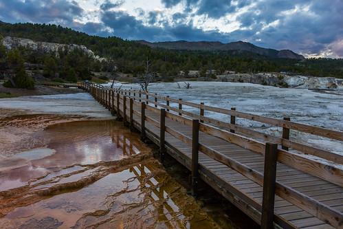 Yellowstone HFF!