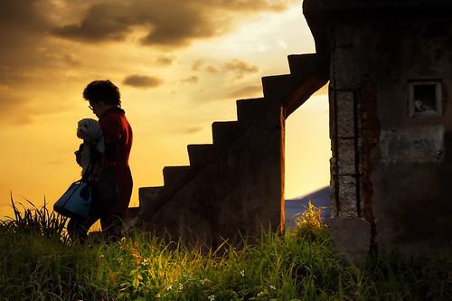 sunset dog silhouette canon puppy story 夕陽 6d 剪影