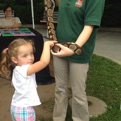 Ashlyn touched a #snake at the #beardsleyzoo. Teagan wouldn't go near it