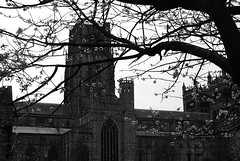 Durham City Cathedral