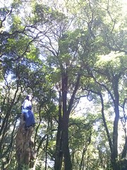 On the Top of Manglayang