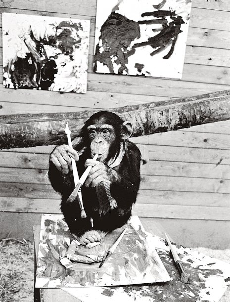 Pierre Brassau the painting chimp