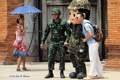 Chiang Mai Life 2014.