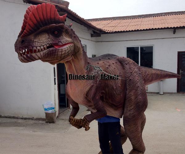 Dilophosaurus Suit for Sale
