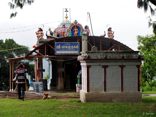 Balamurugan Temple, Thandikudi