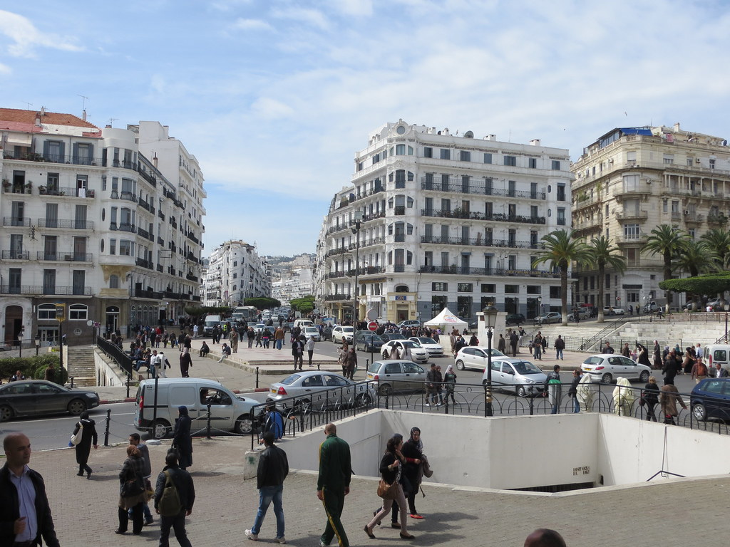 Alger 551