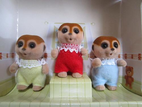 meerkat triplets