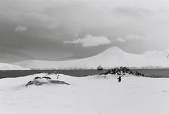 Antarctica Lost Film (9)