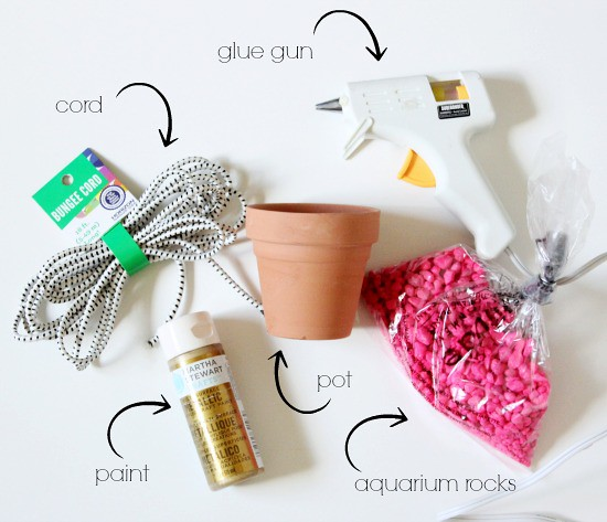 Hi Sugarplum | Succulent Planter