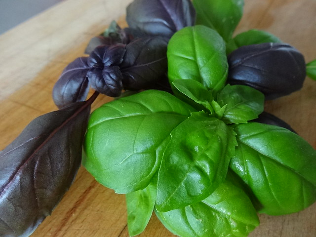 Purple and Green Basil Delight!