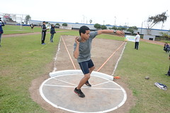 throwing, athletics, track and field athletics, sport venue, sports, shot put, player, person, physical exercise, athlete,