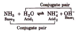 CBSE Class 11 Chemistry Notes : Ionic Equilibrium – AglaSem