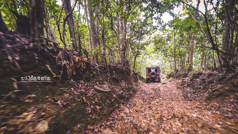 Sakleshpur-Trail