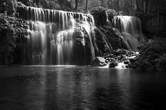 Middle Falls, BW