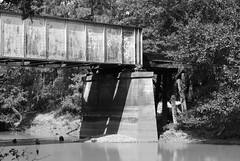 Union Pacific Railroad Bridge over Angelina River, Lufkin, Texas 1409251112bw