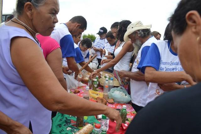Cada guardião trouxe suas experiências com as casas de sementes e os benefícios que estas trouxeram para suas respectivas comunidades - Créditos: Daniela Bento