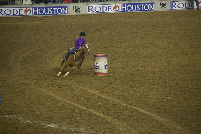 Rodeo and Concert2_70