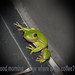 Tree Frog by blsturman