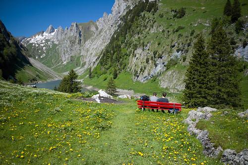 flowers red lake nature bench landscape schweiz switzerland see europe suisse hiking 28mm rangefinder svizzera mountainlake bergsee appenzell wanderung m9 alpstein 2014 blumenwiese svizra bollenwees elmaritm fälensee appenzellinnerrhoden messsucher 140607 fählensee ©toniv leicam9 l1016666