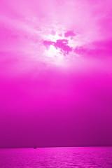 Pinkish trip.