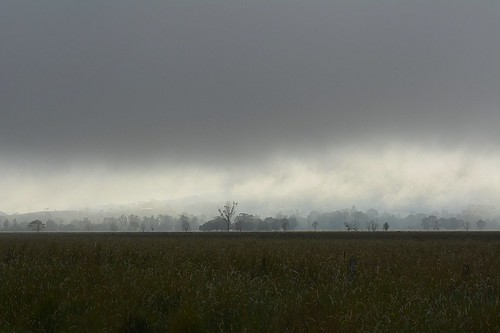 morning winter fog landscape countryside foggy sunny australia bluesky nsw australianlandscape lismore foggymorning northernrivers valleyfog rurallandscape morninglandscape