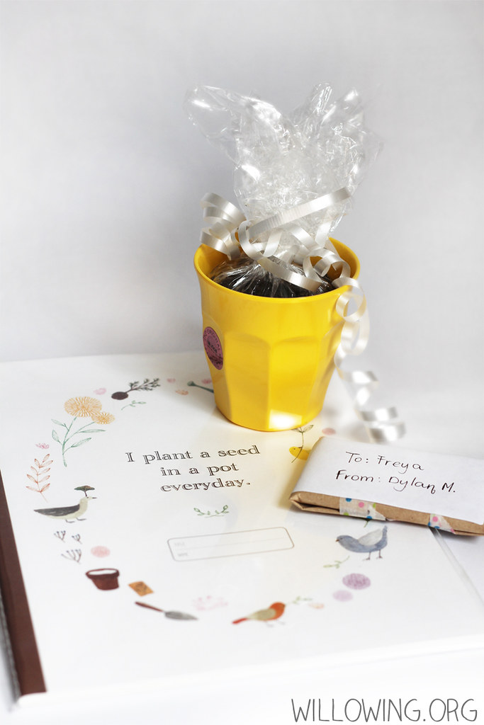 Eco-friendly Gift Idea 1